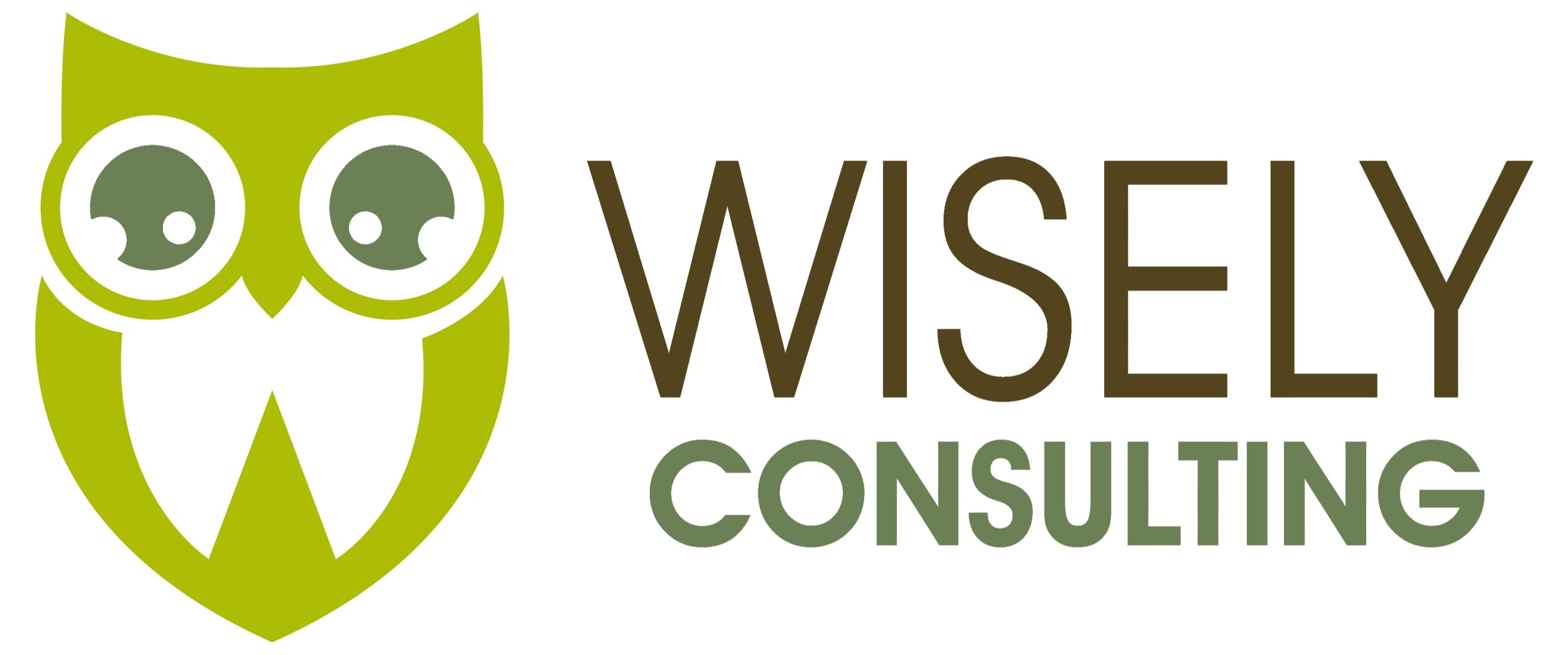 Wisely Consulting
